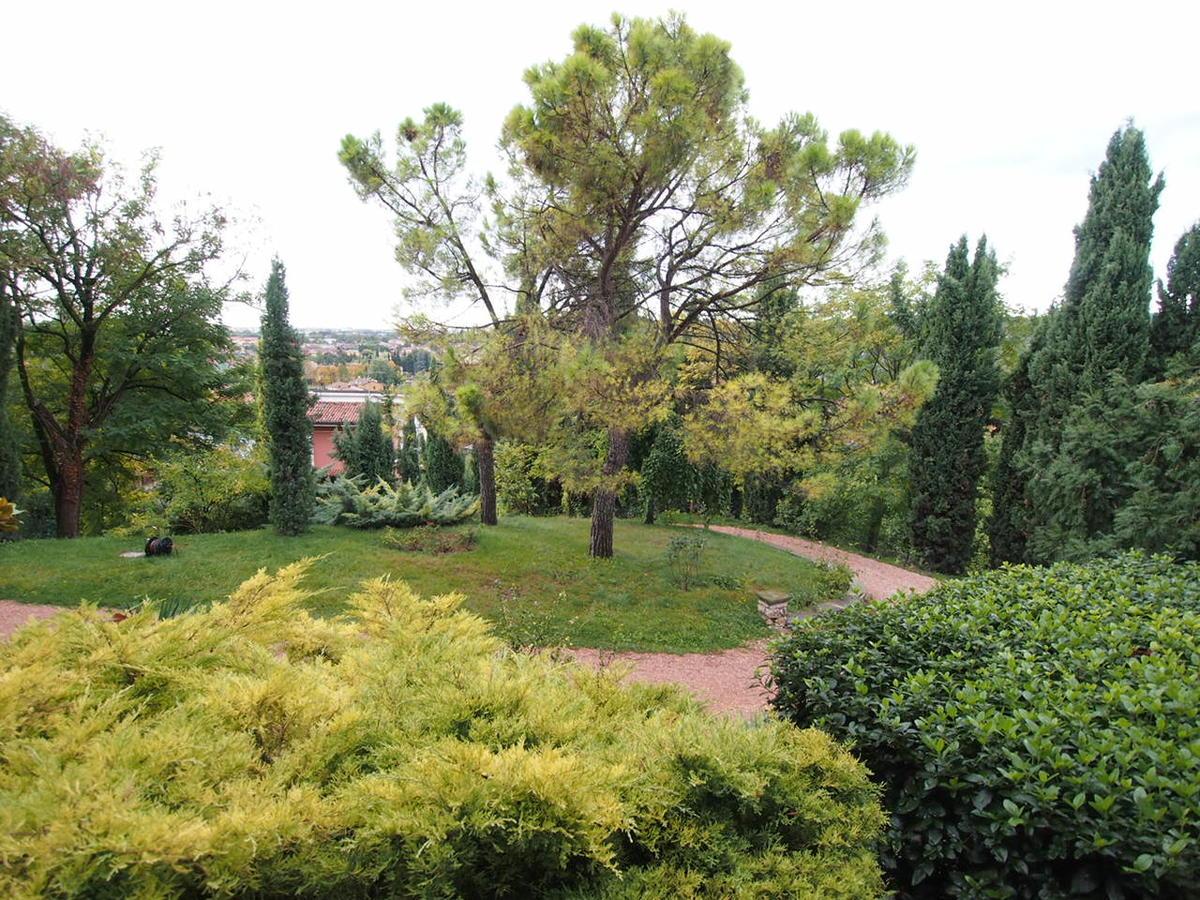 Appartamenti In Affitto A Verona Centro