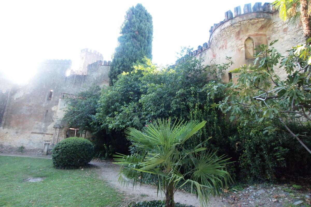 Colognola ai colli, est Verona, corte del '500 in vendita - 16