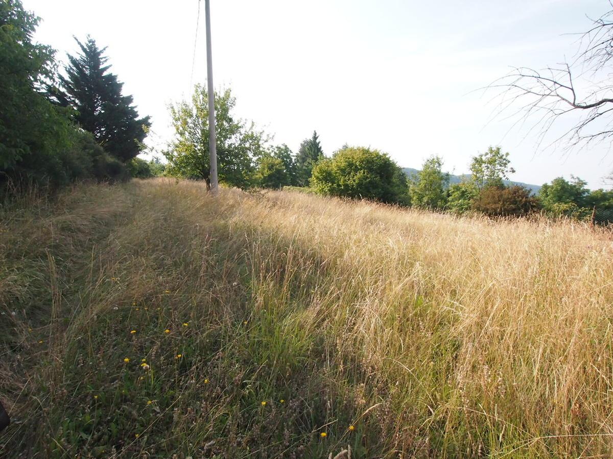 Negrar, terreno con casetta in vendita zona Fane - 8