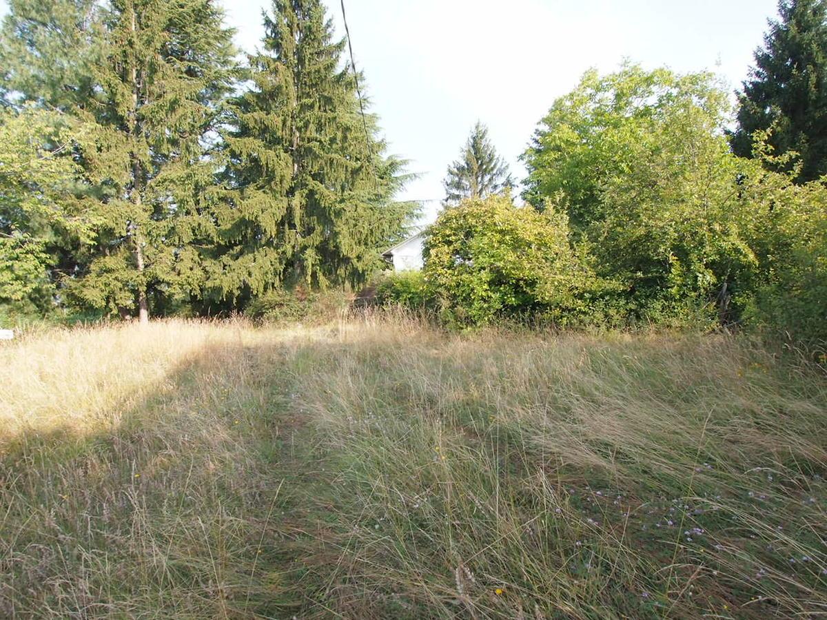 Negrar, terreno con casetta in vendita zona Fane - 16