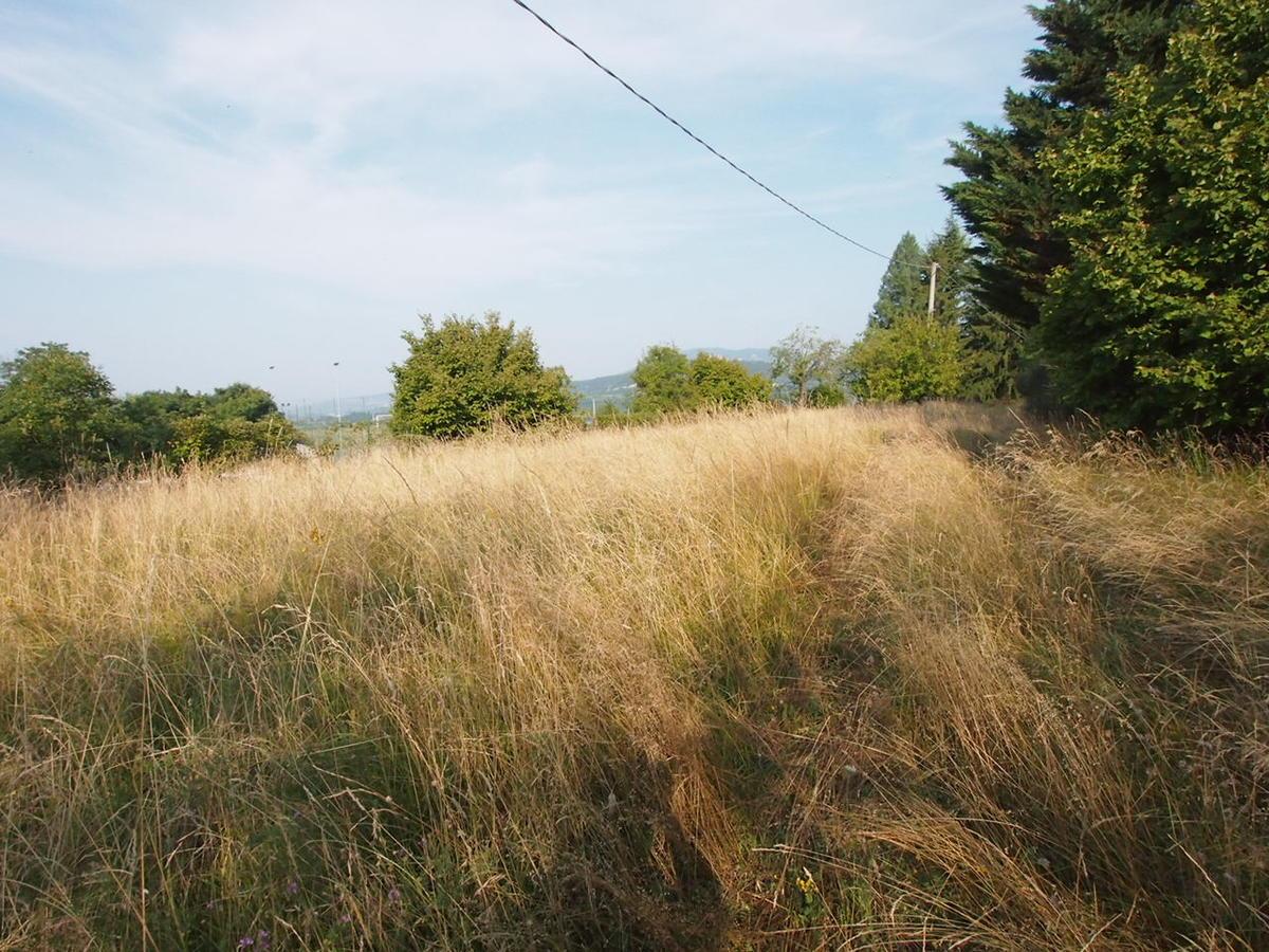 Negrar, terreno con casetta in vendita zona Fane - 18