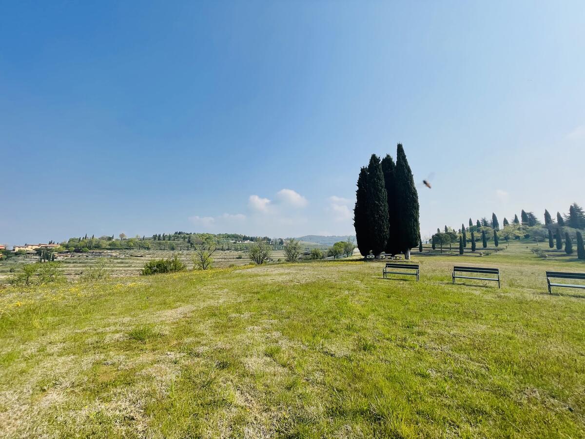 Villa con proprietà estesa per 10 ettari nella posizione più bella di Verona - 1