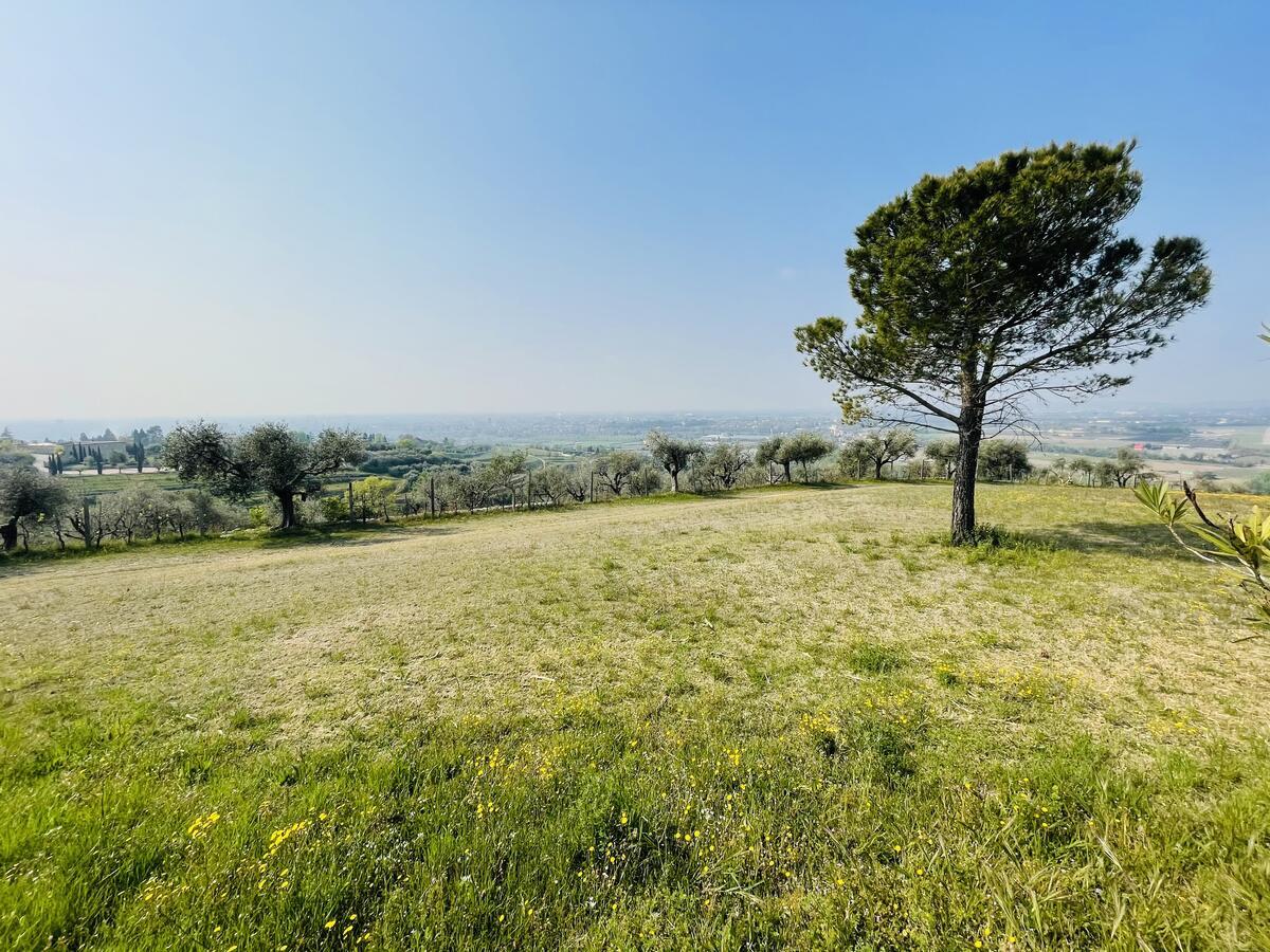Villa con proprietà estesa per 10 ettari nella posizione più bella di Verona - 4