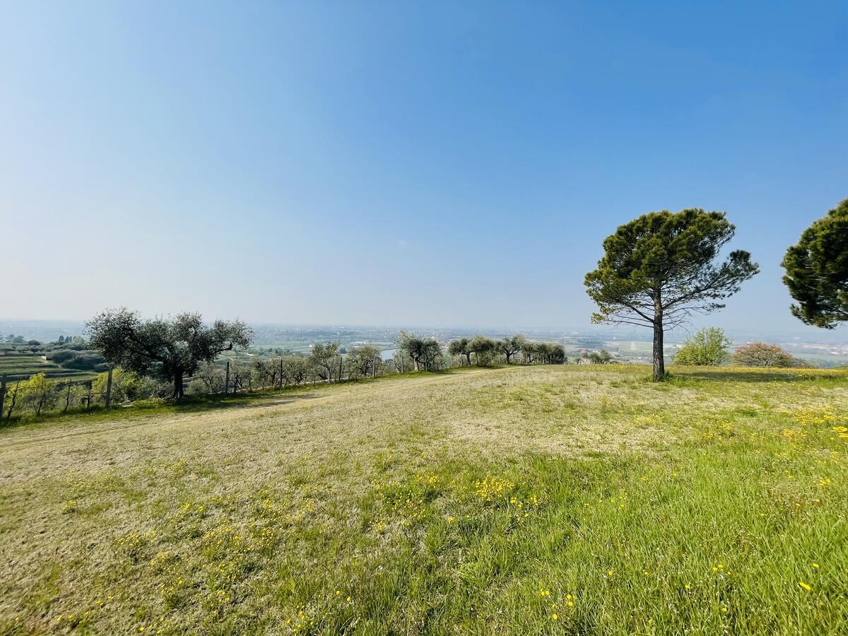Villa con proprietà estesa per 10 ettari nella posizione più bella di Verona - 9