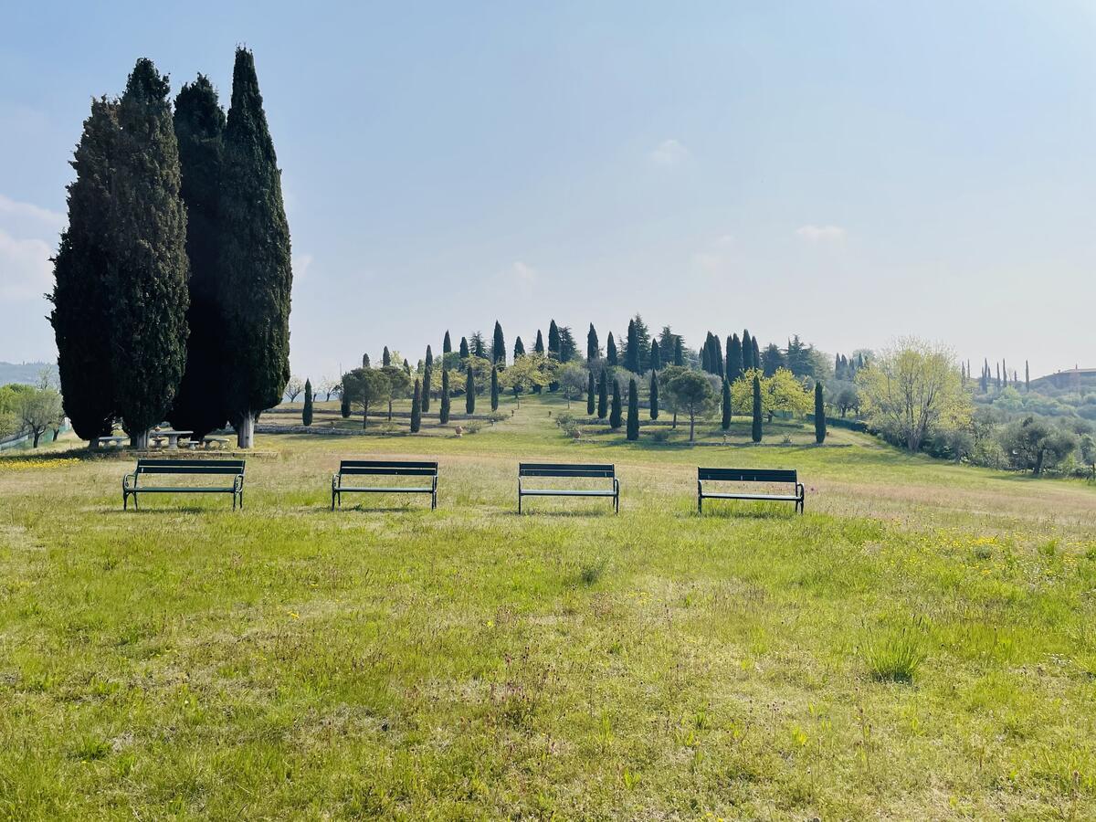 Villa con proprietà estesa per 10 ettari nella posizione più bella di Verona - 11