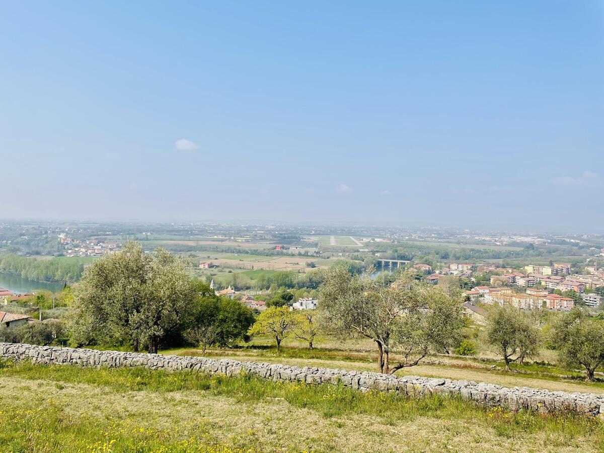 Villa con proprietà estesa per 10 ettari nella posizione più bella di Verona - 13