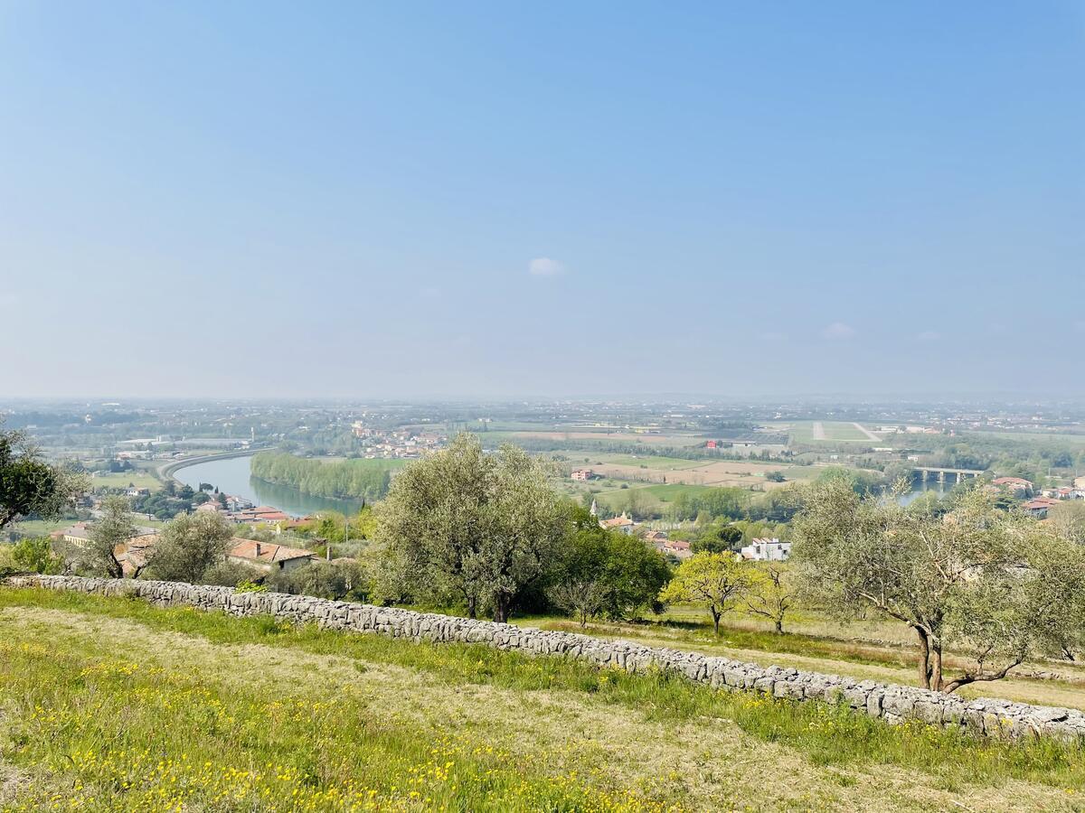 Villa con proprietà estesa per 10 ettari nella posizione più bella di Verona - 14