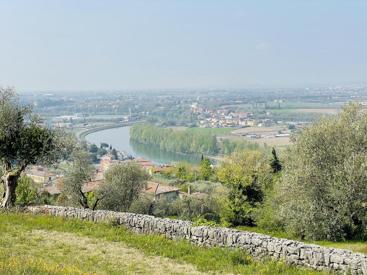Villa con proprietà estesa per 10 ettari nella posizione più bella di Verona - 19