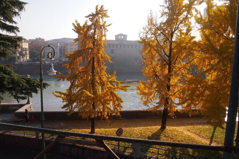 Verona, Castelvecchio, ampio appartamento in affitto